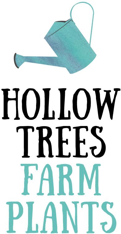 https://www.hollowtrees.co.uk/wp-content/uploads/2016/08/farm-plants.jpg